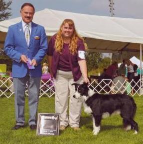 Winners Dog @ AKC show Samamish, WA